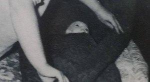 Molesztálta, agyonszurkálta, végül a fáskamrába rejtette az újságpapírba csomagolt négyéves Anikó holttestét Éva