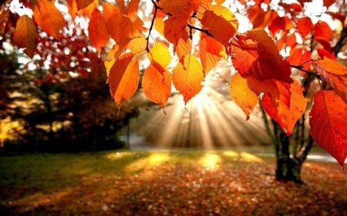 Élvezzék ki a napsütést, jövő héttől pokoli időjárás vár ránk