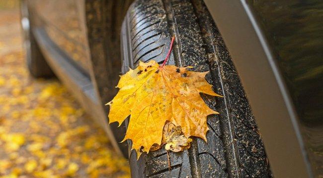 Őszi kihívások az utakon:Finom fékezéssel szárítsa ki a nyirkos fékbetéteket!