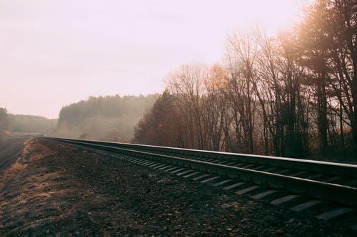 Elgázolt a vonat egy rendőrnőt, aki illegális bevándorlókat követett Baranya megyében