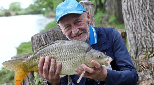 Már fél évszázada fárasztja a halakatReviczky Gábor