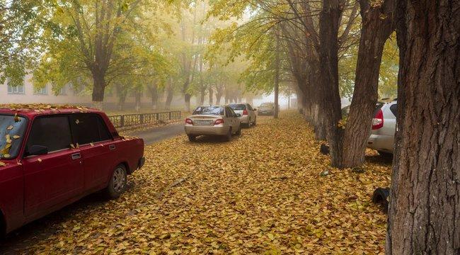 Autósra és gyalogosra is veszélyesek a falevelek