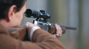 Brutális: felje lőttek egy kutyát Füzesabonyban