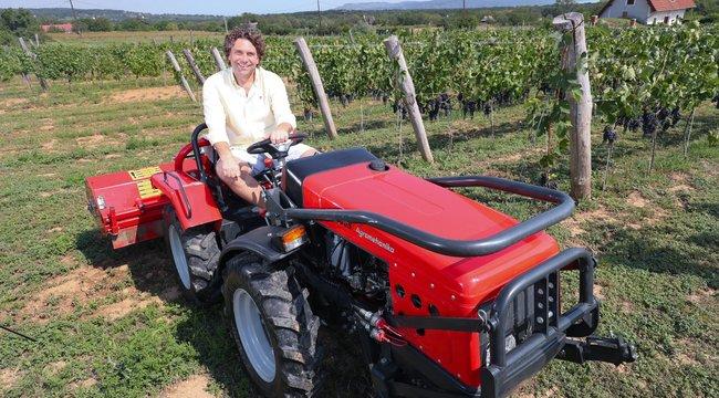 25 éve a BL-ben focizott, ma bort árul a Fradi korábbi játékosa