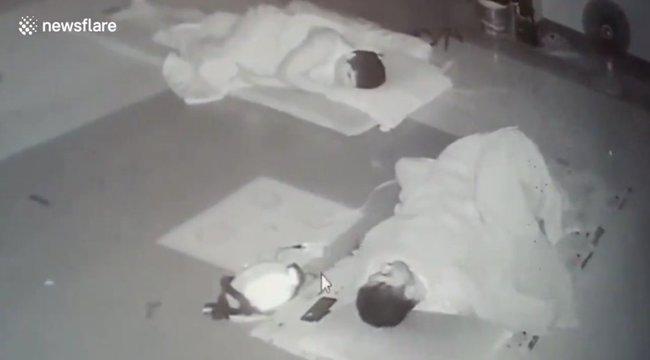 Videón, ahogy az alvó férfi ágyába bebújik egy mérgeskígyó