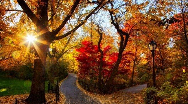 Derűs október: ragyogó időjárás vár ránk a hosszú hétvégén