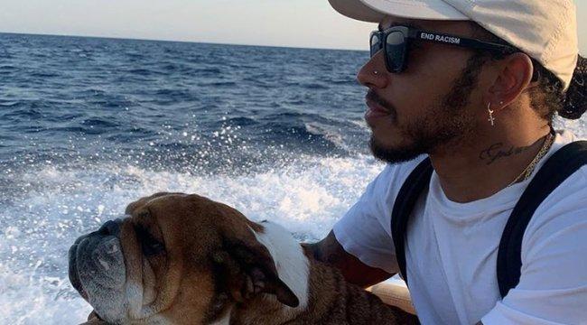 Lassú kínhalálra ítélte kutyáját Lewis Hamilton – a rajongói teljesen kiakadták rá