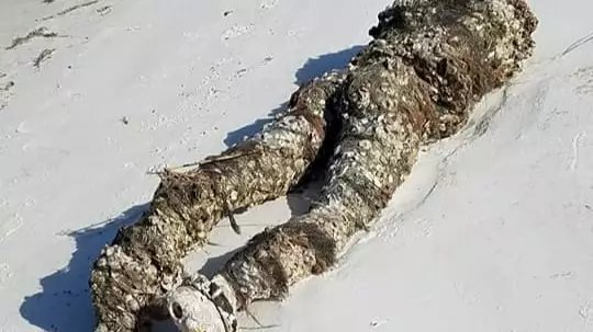 """Sokkot kaptak a strandolók: """"lefejezett holttestet"""" sodort partra a víz – fotó"""