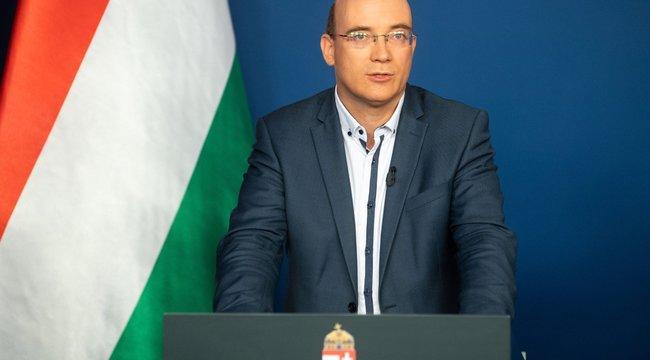 Maruzsa Zoltán: No vakcina, no party