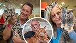 Macskát tartanál? Egy trendi cicáért minimum 300 ezret kell fizetned – videó