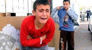 Több kisdiák rosszul lett a vágóhídi kiránduláson
