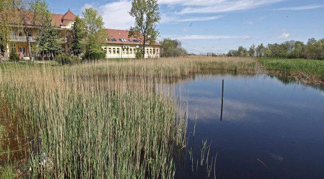 Isteni adomány a csongrádi gyógyító tó
