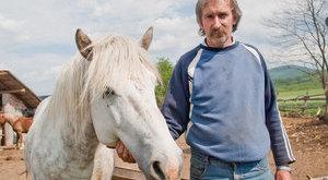 Állatvédőket üldözött traktorral István gazda