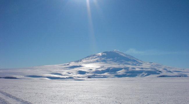 Pálmafák nőttek az Antarktiszon