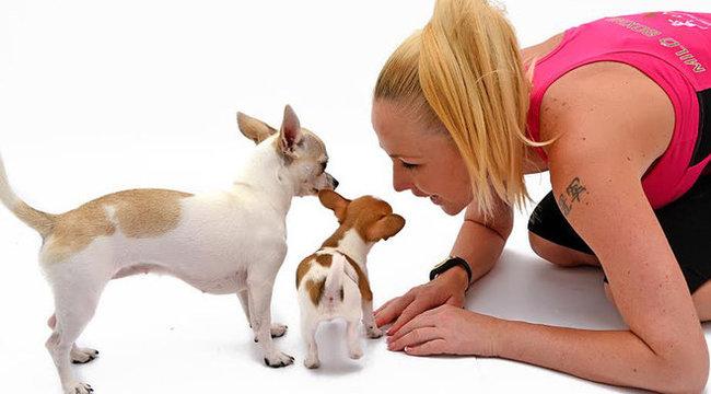Mini kutyáival boldog Miló Viki