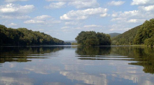 Félelmetes szerzetek úszkálnak a folyókban