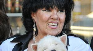 Napi bánat: Dolly filmje nem készül